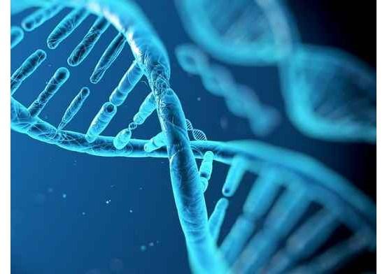 Koronavirüs Beyin Hasarına Neden Olabiliyor: İşte Merak Edilen Detaylar