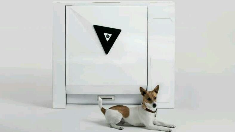 Bu bir ilk: Akıllı köpek tuvaleti geliyor