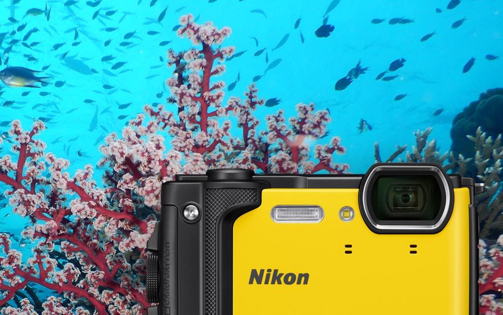 Denize ve Havuza Dayanıklı Fotoğraf Makineleri